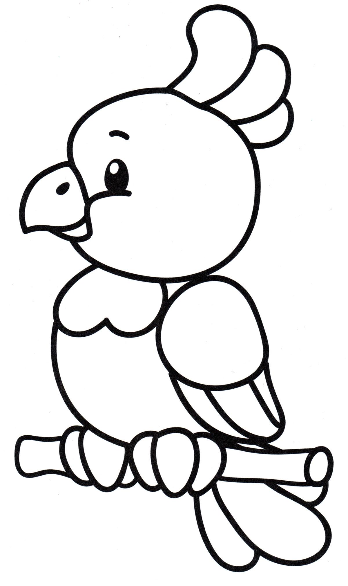 Раскраска Маленький попугайчик на ветке - распечатать ...