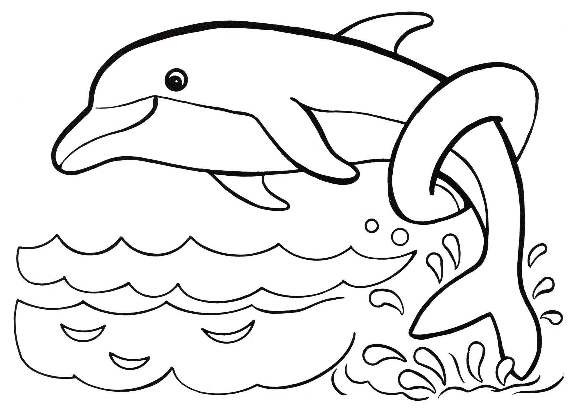 Картинки дельфины раскраска