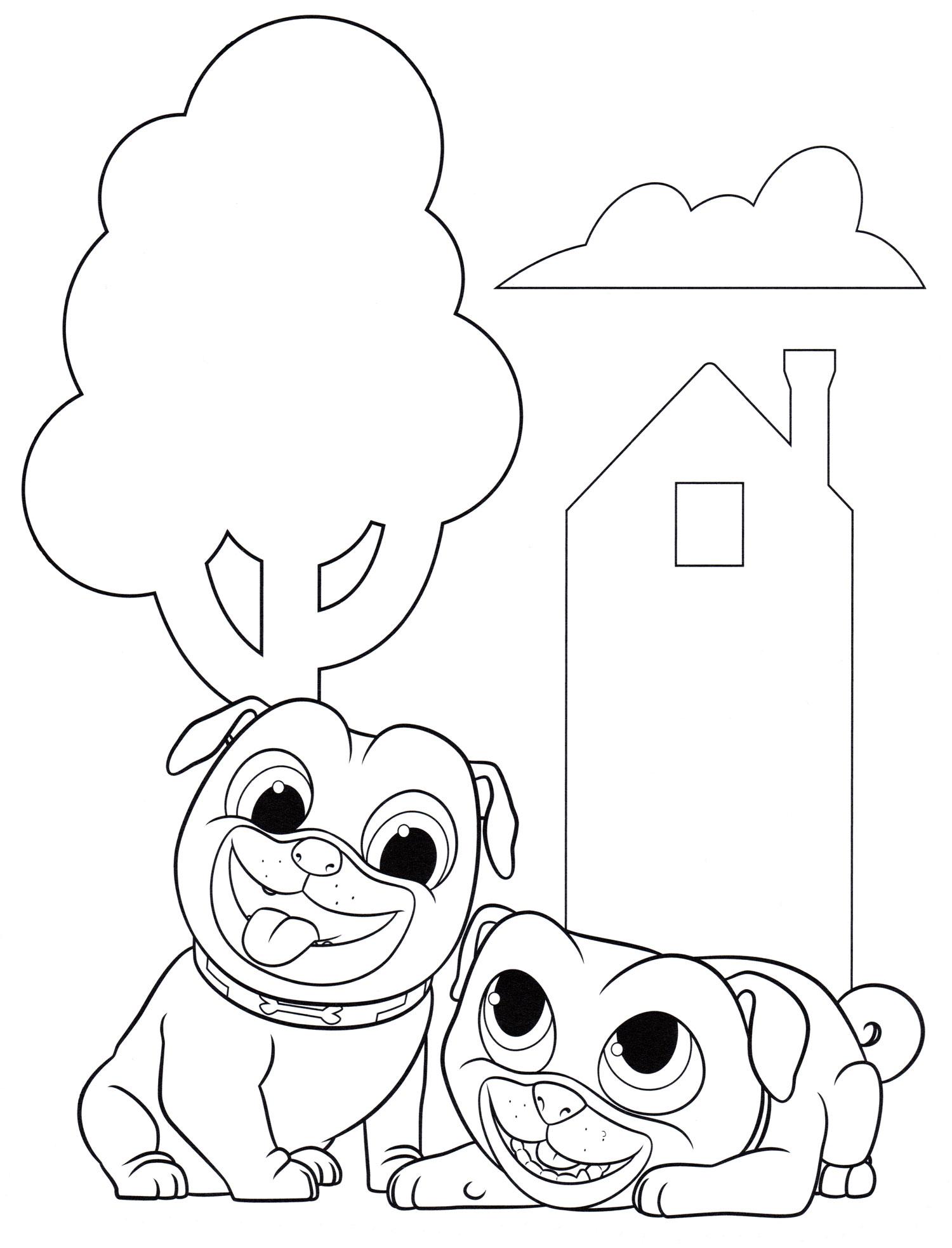 Раскраска Веселые Бинго и Ролли | Раскраски Дружные мопсы