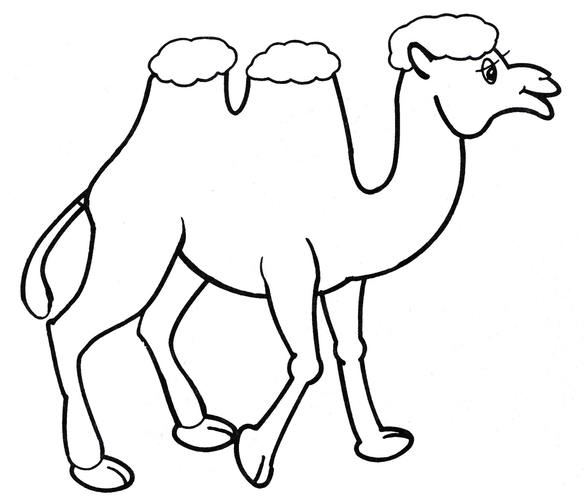обвил верблюд картинка рисовать цветов