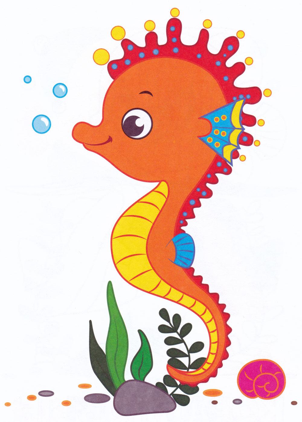 Раскраска Морской конек под водой - распечатать бесплатно