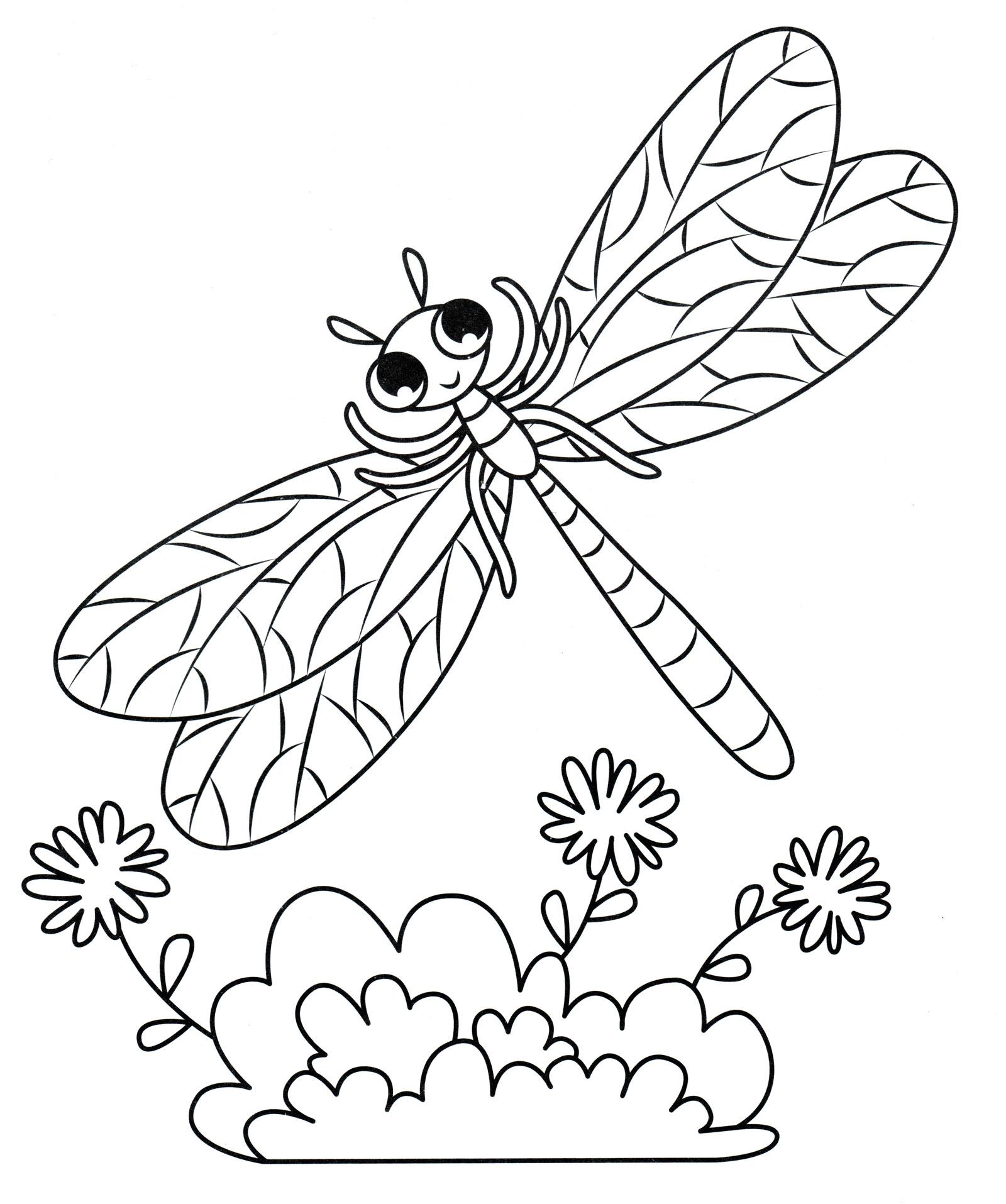 Картинка насекомые раскраска