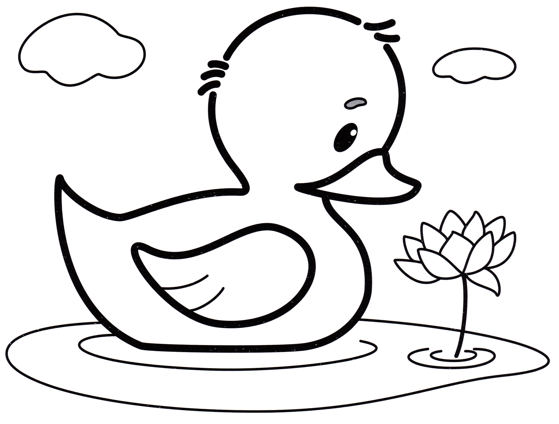Раскраска Утенок в воде - распечатать бесплатно