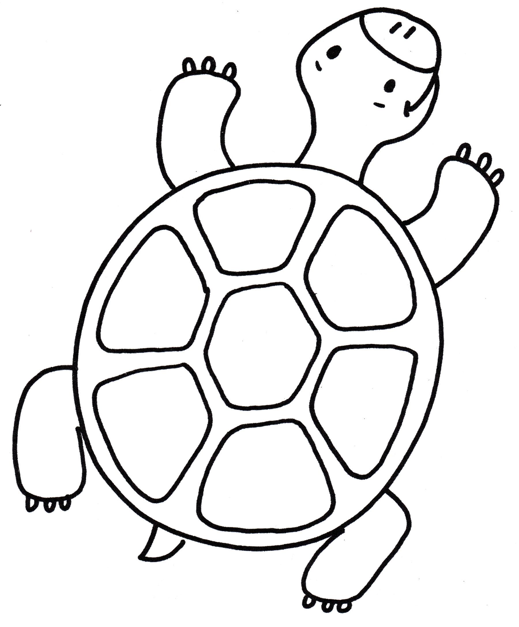время рисунки для раскрашивания черепаха первый положили
