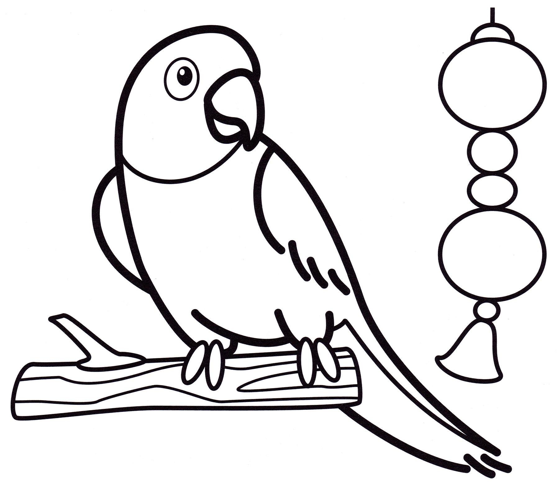 Раскраска Попугайчик на дереве - распечатать бесплатно