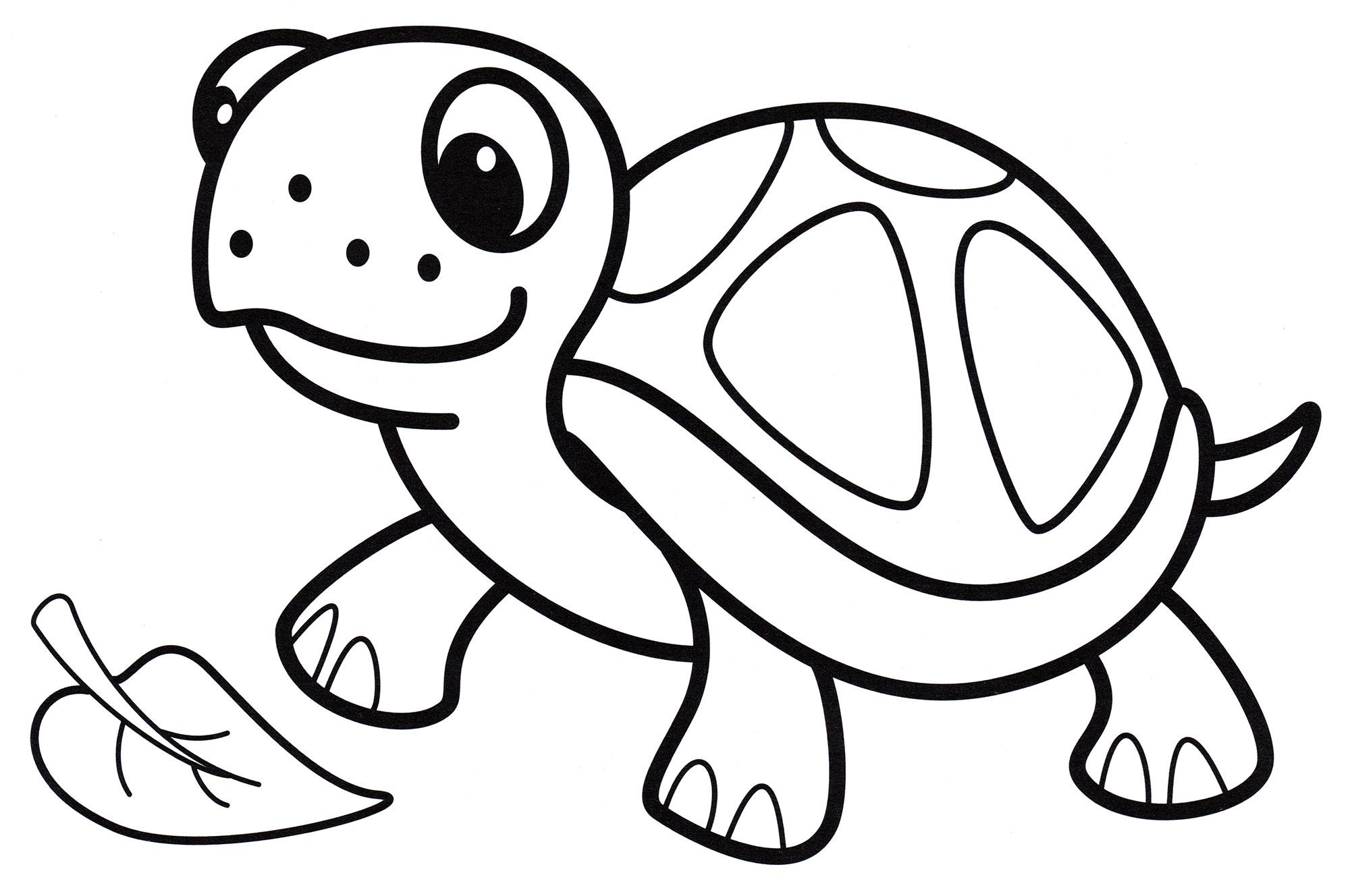 Раскраска Малютка черепаха - распечатать бесплатно
