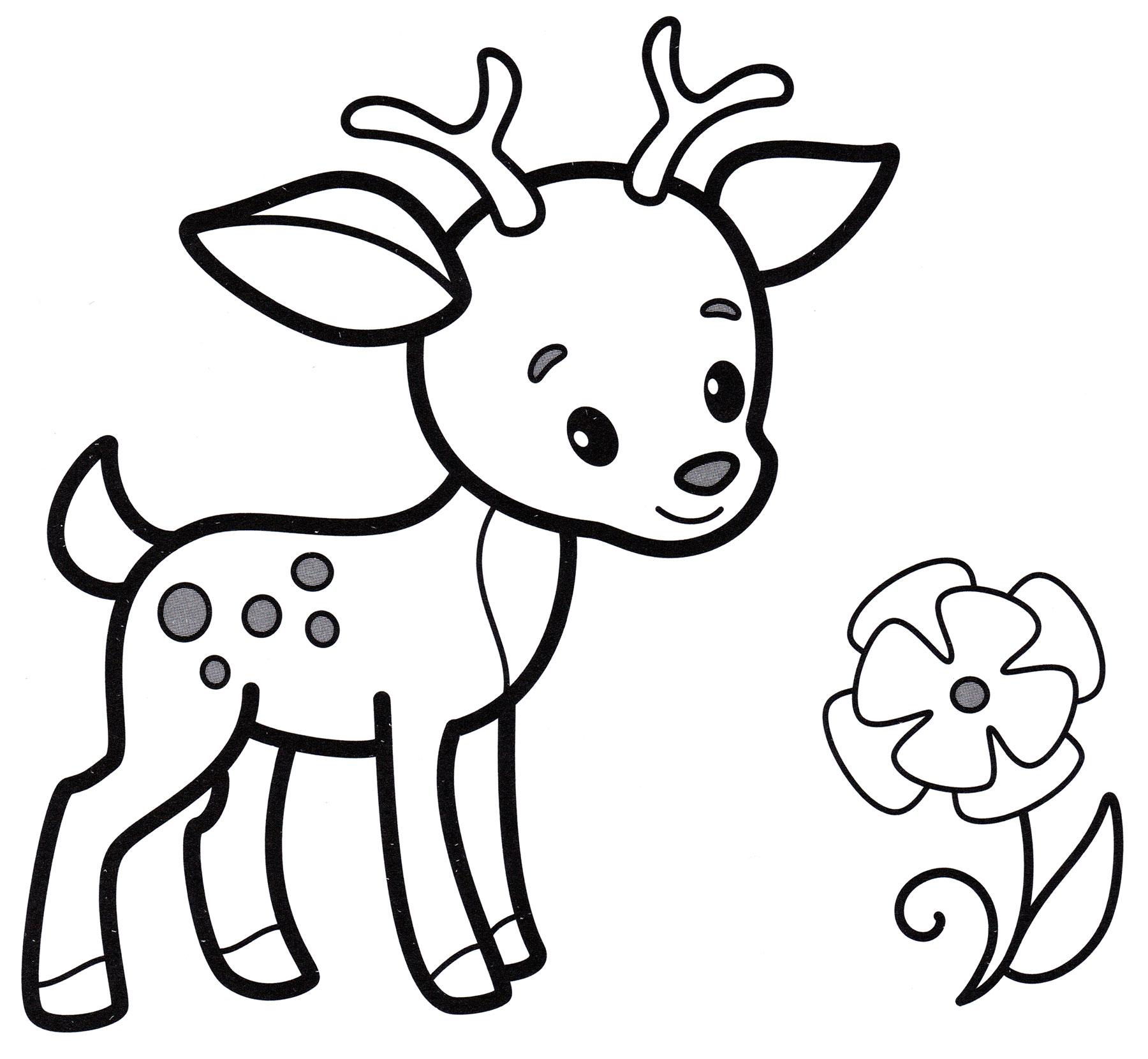 Раскраска Красивый олененок - распечатать бесплатно