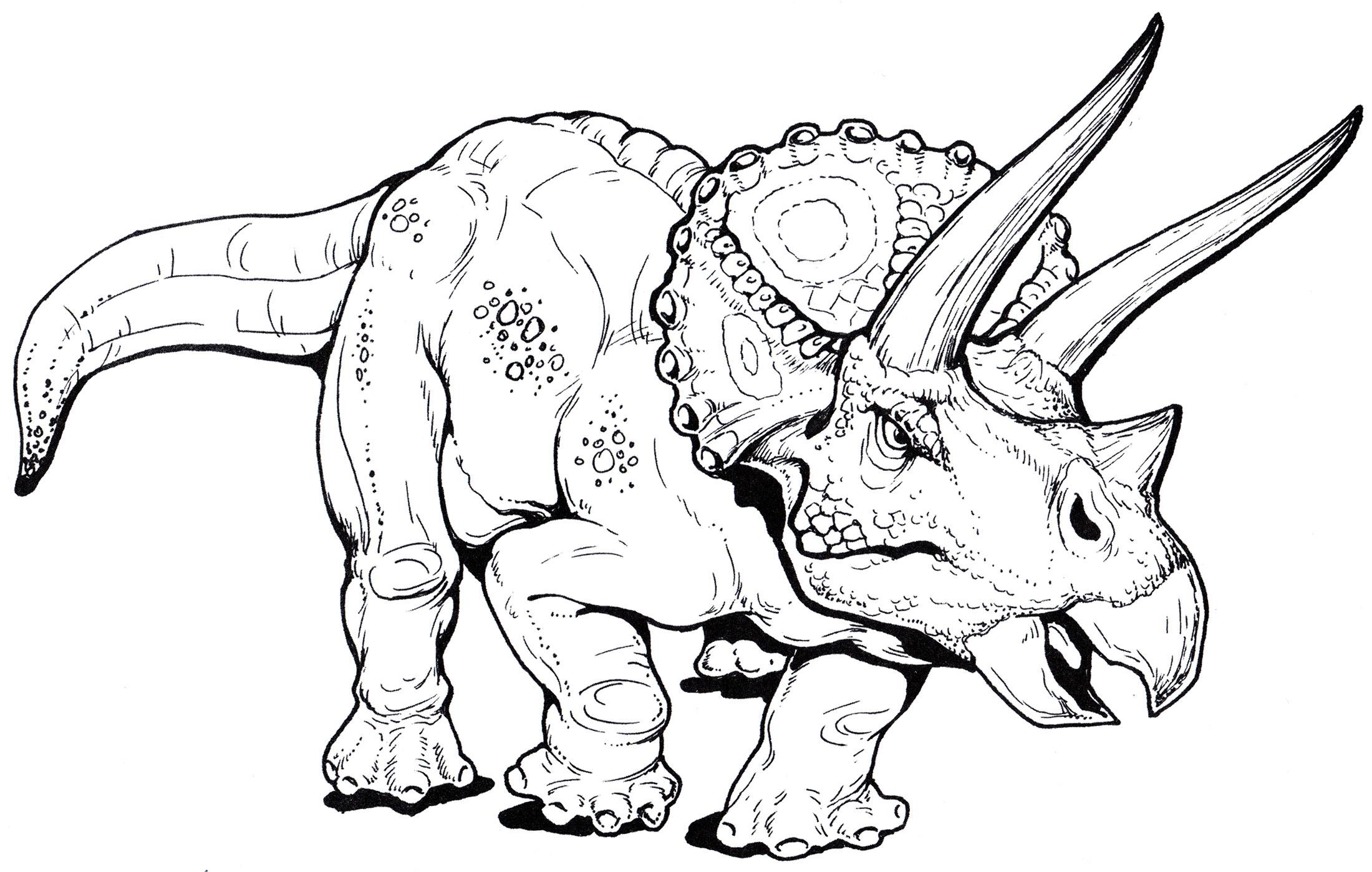 Динозавры раскраска распечатать картинки
