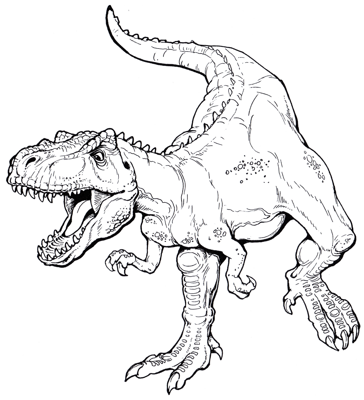 тираннозавр рекс картинки для разукрашивания популярный