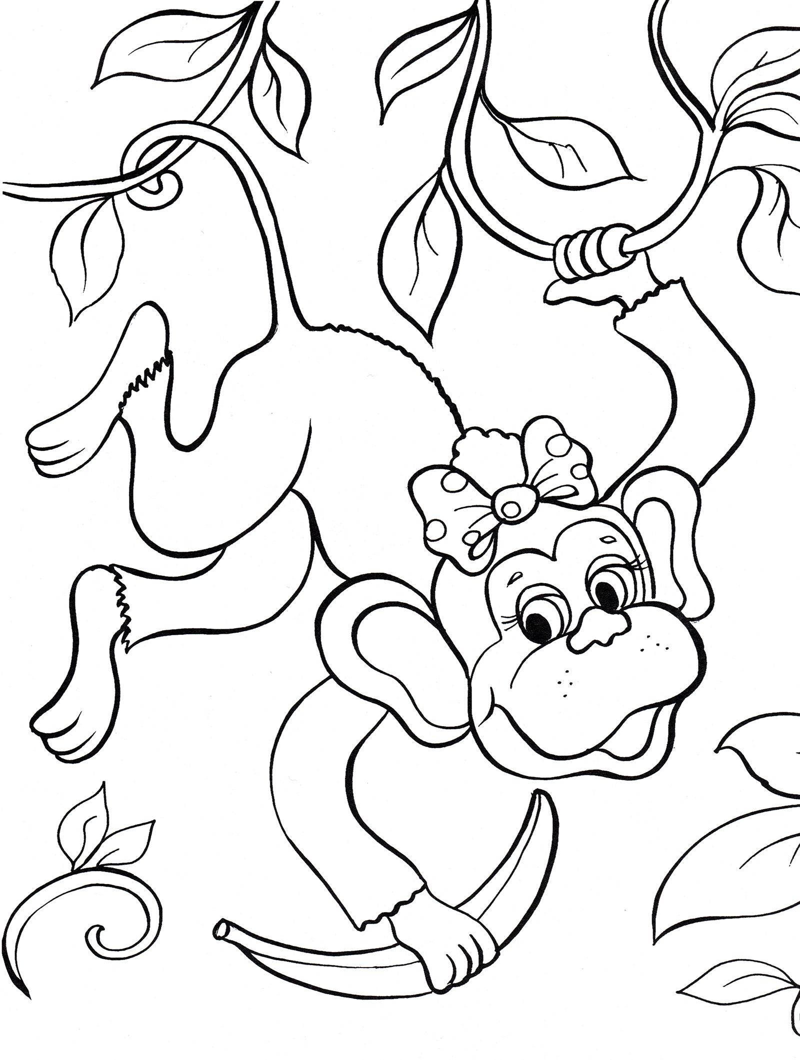 Раскраска Обезьяна на лиане - распечатать бесплатно