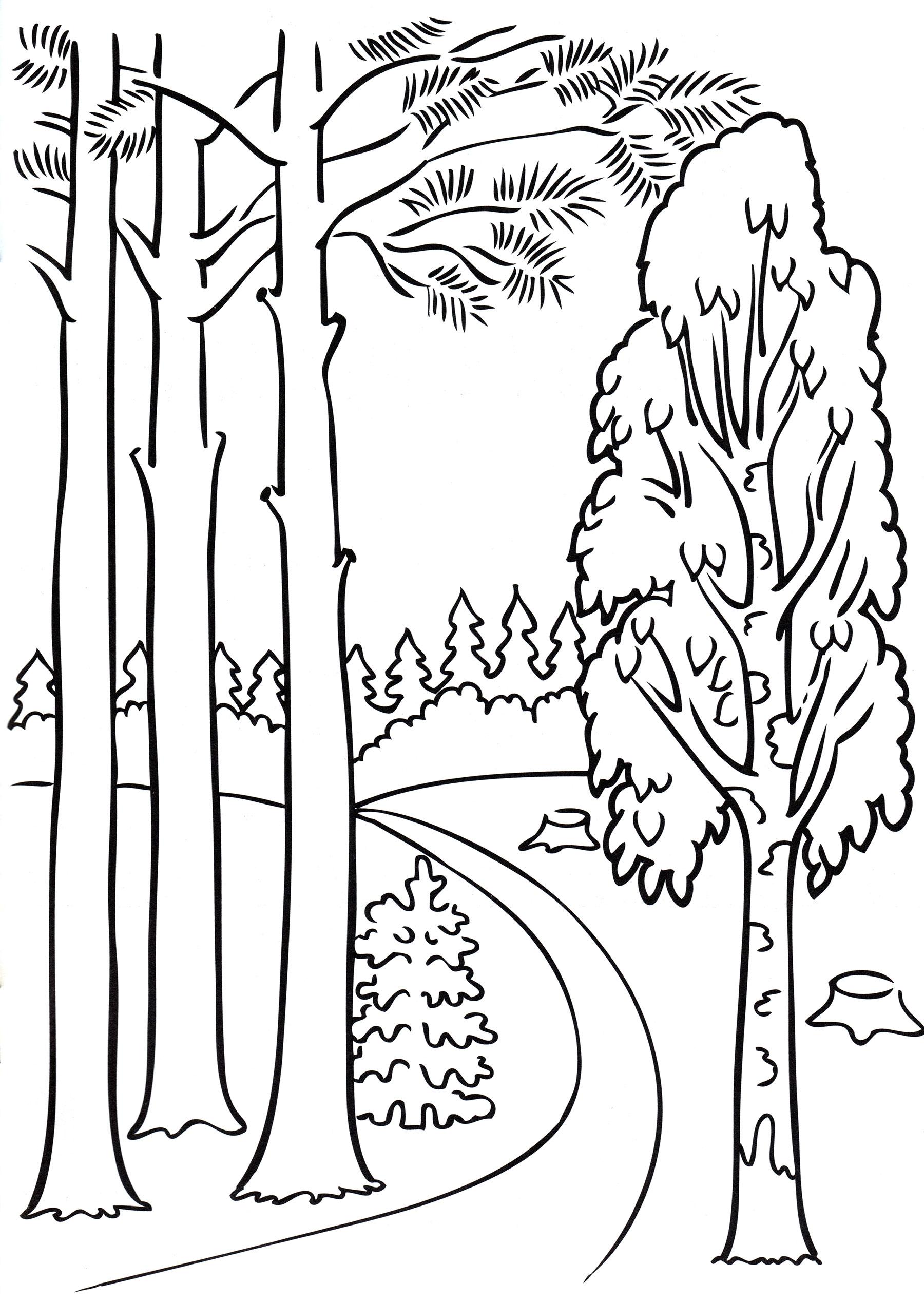 была лес для раскрашивания есть аппараты