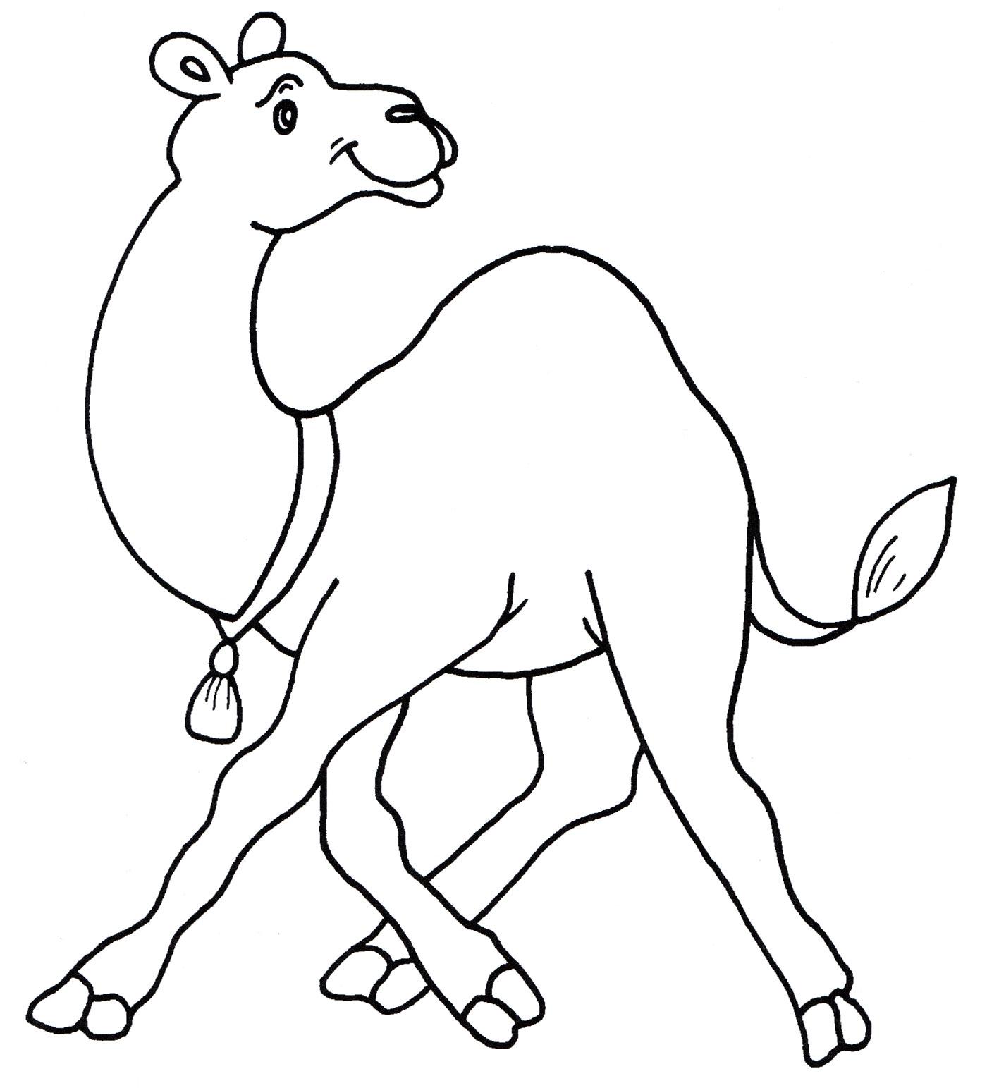 комплекс от чего у верблюда горб картинки раскраски поняла, что должна