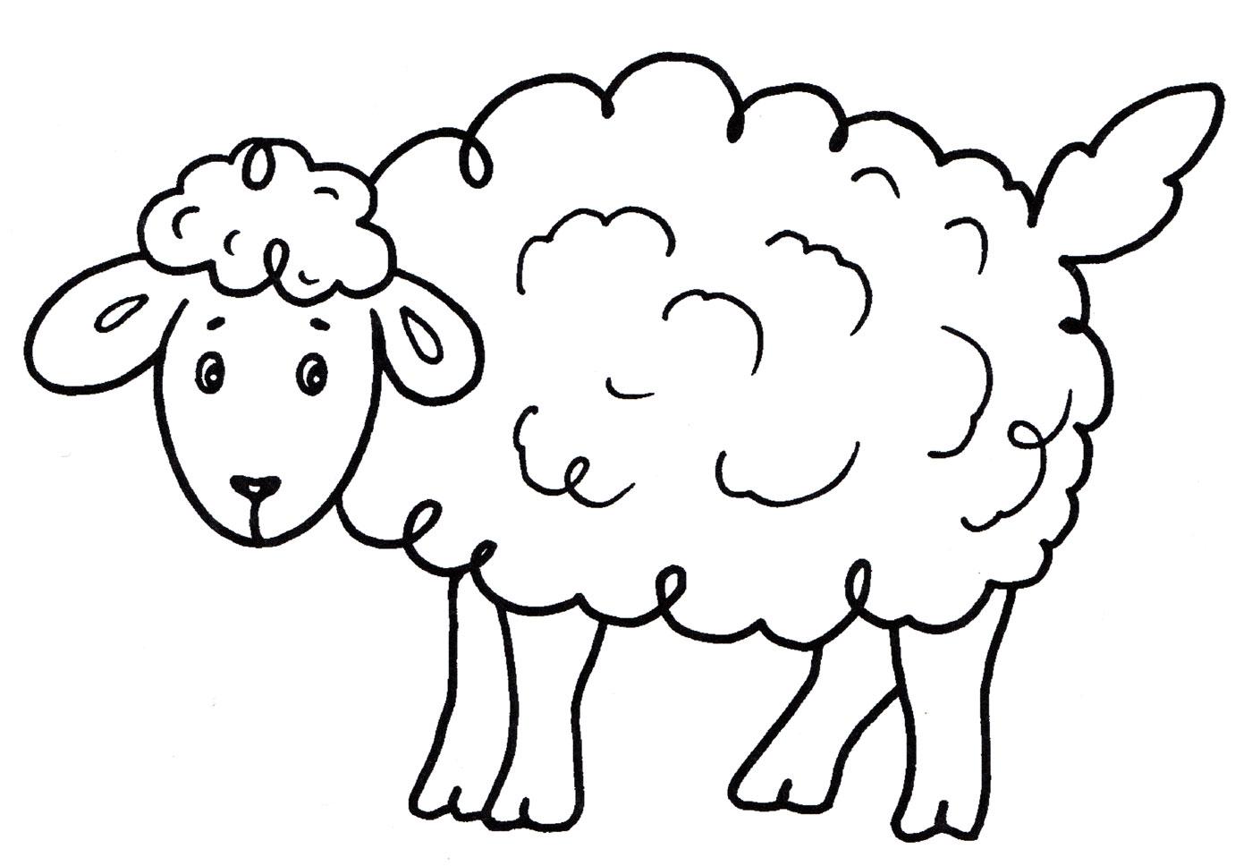 Овца раскраска распечатать