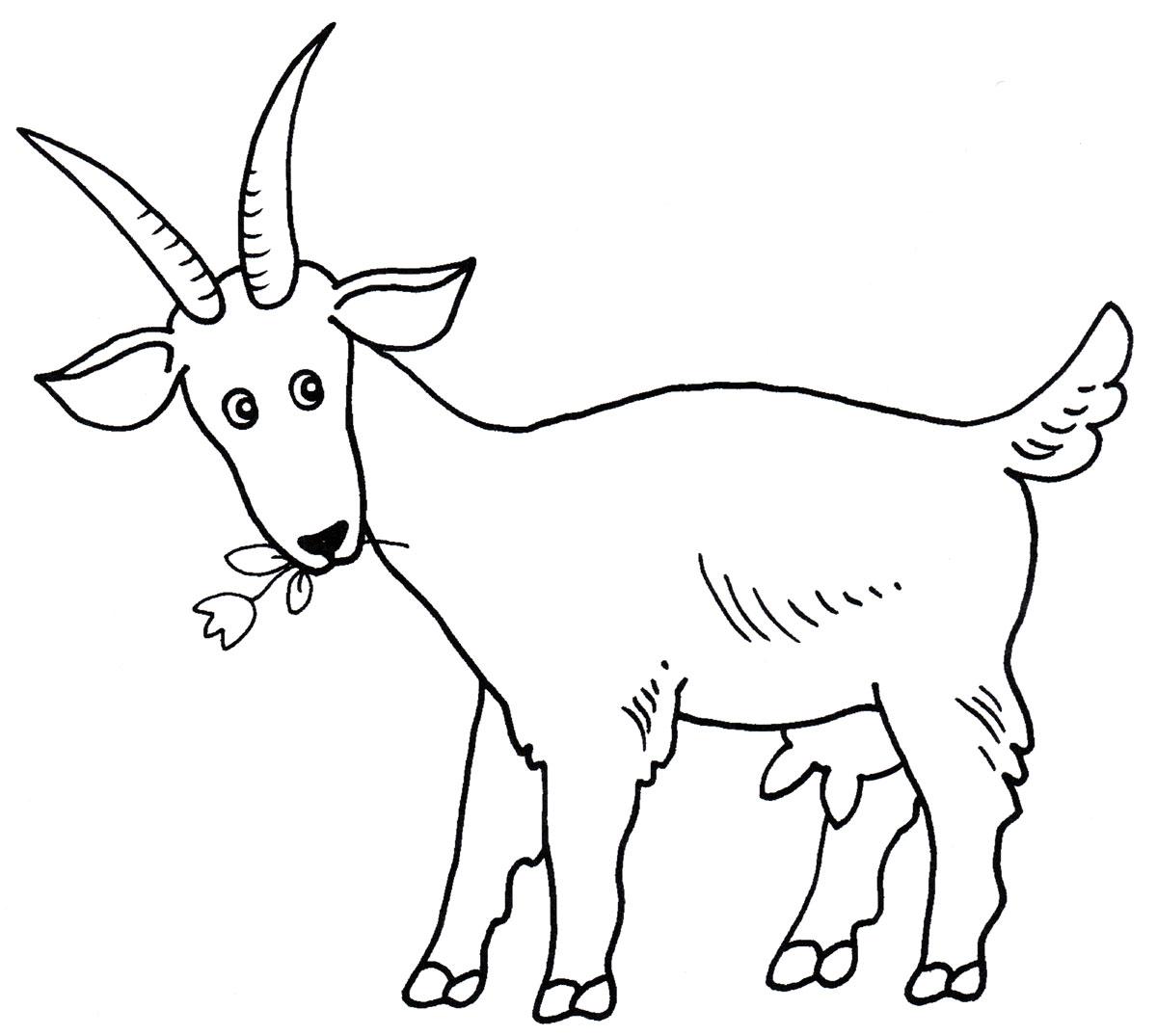 Картинки нарисованных коз