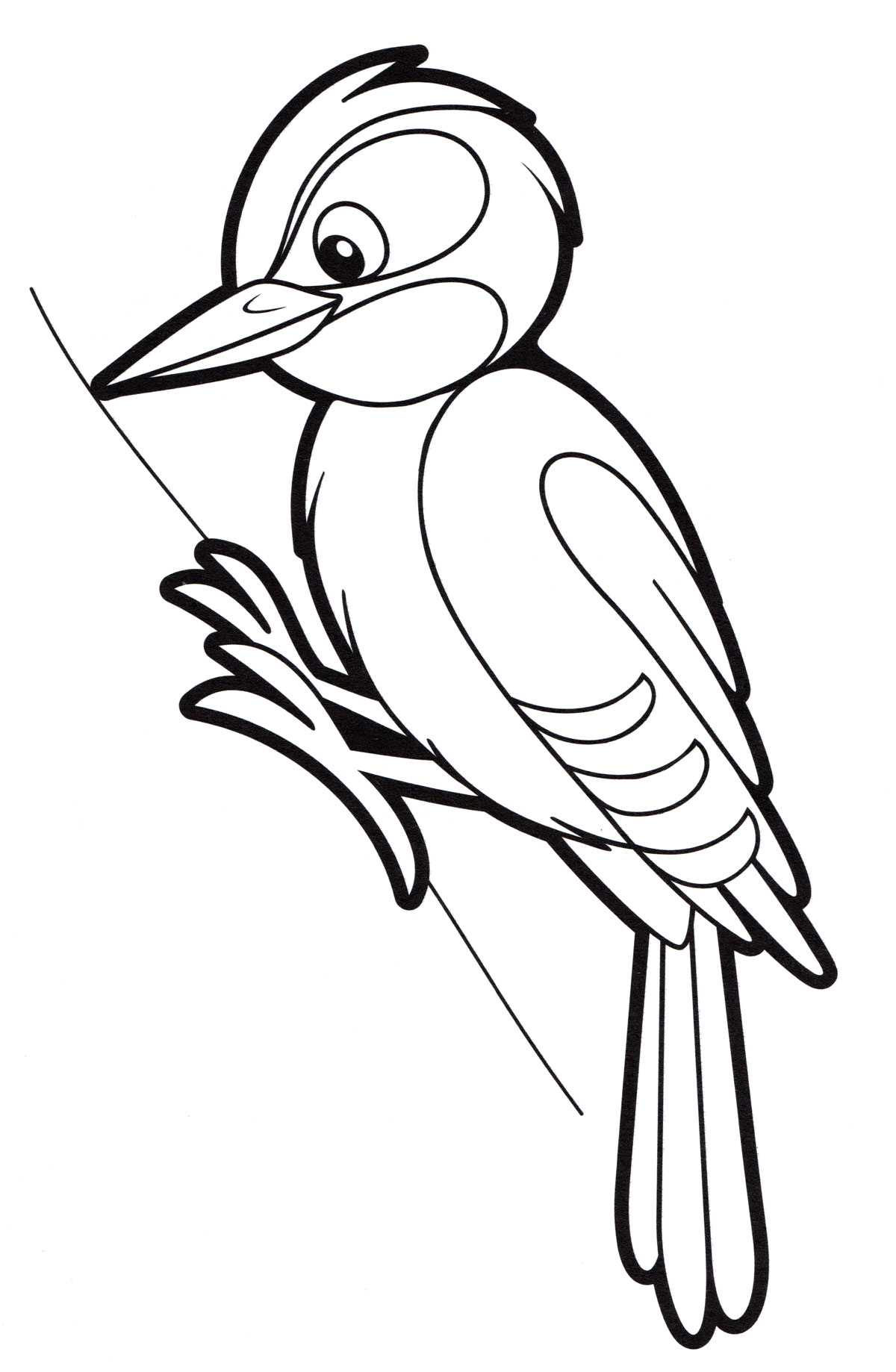 Дятел птица рисунок