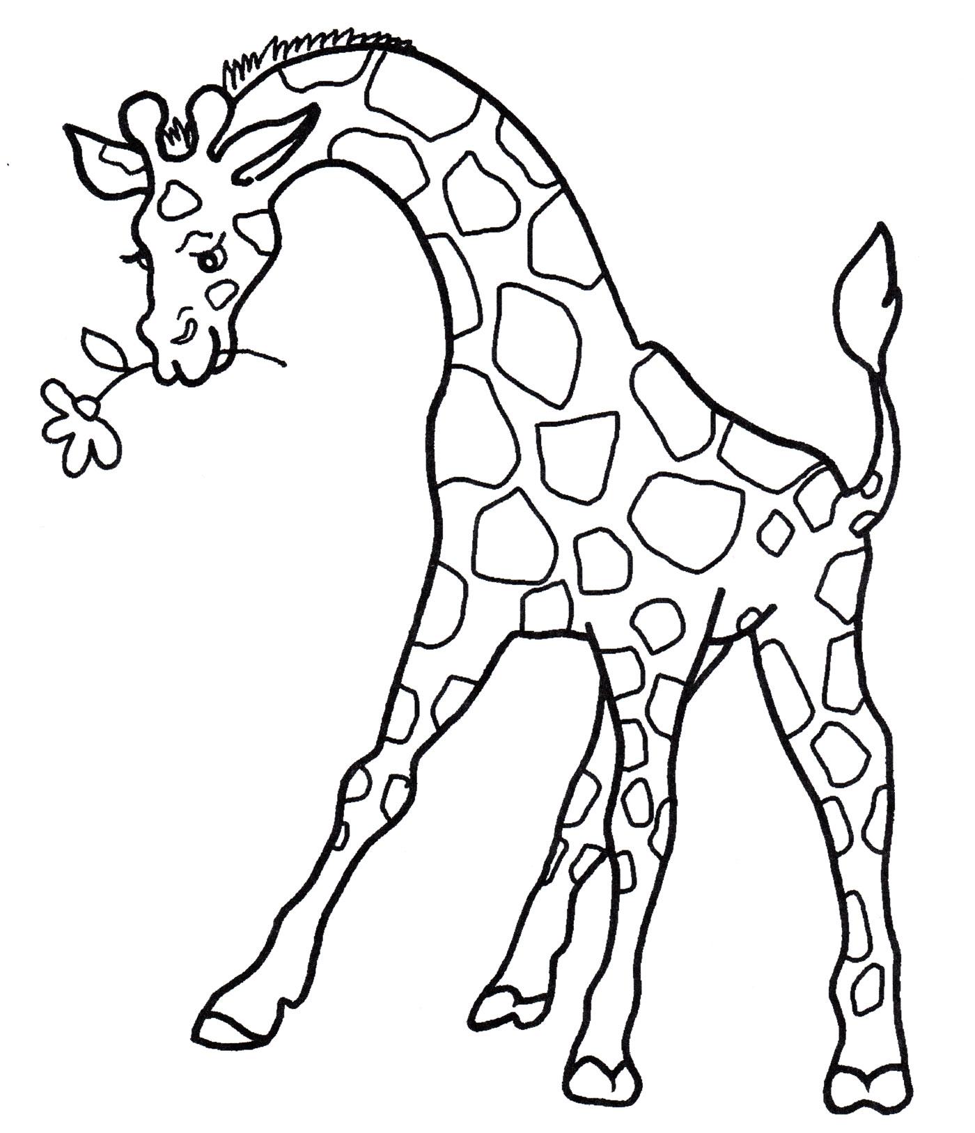 Раскраска Жираф с цветочком - распечатать бесплатно