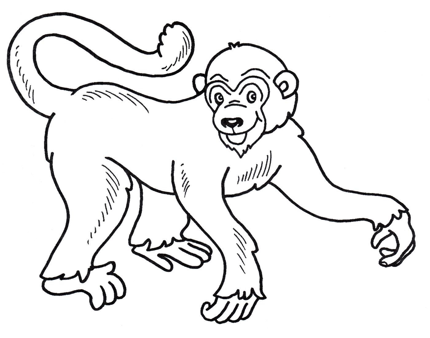 Раскраска Довольная обезьяна - распечатать бесплатно