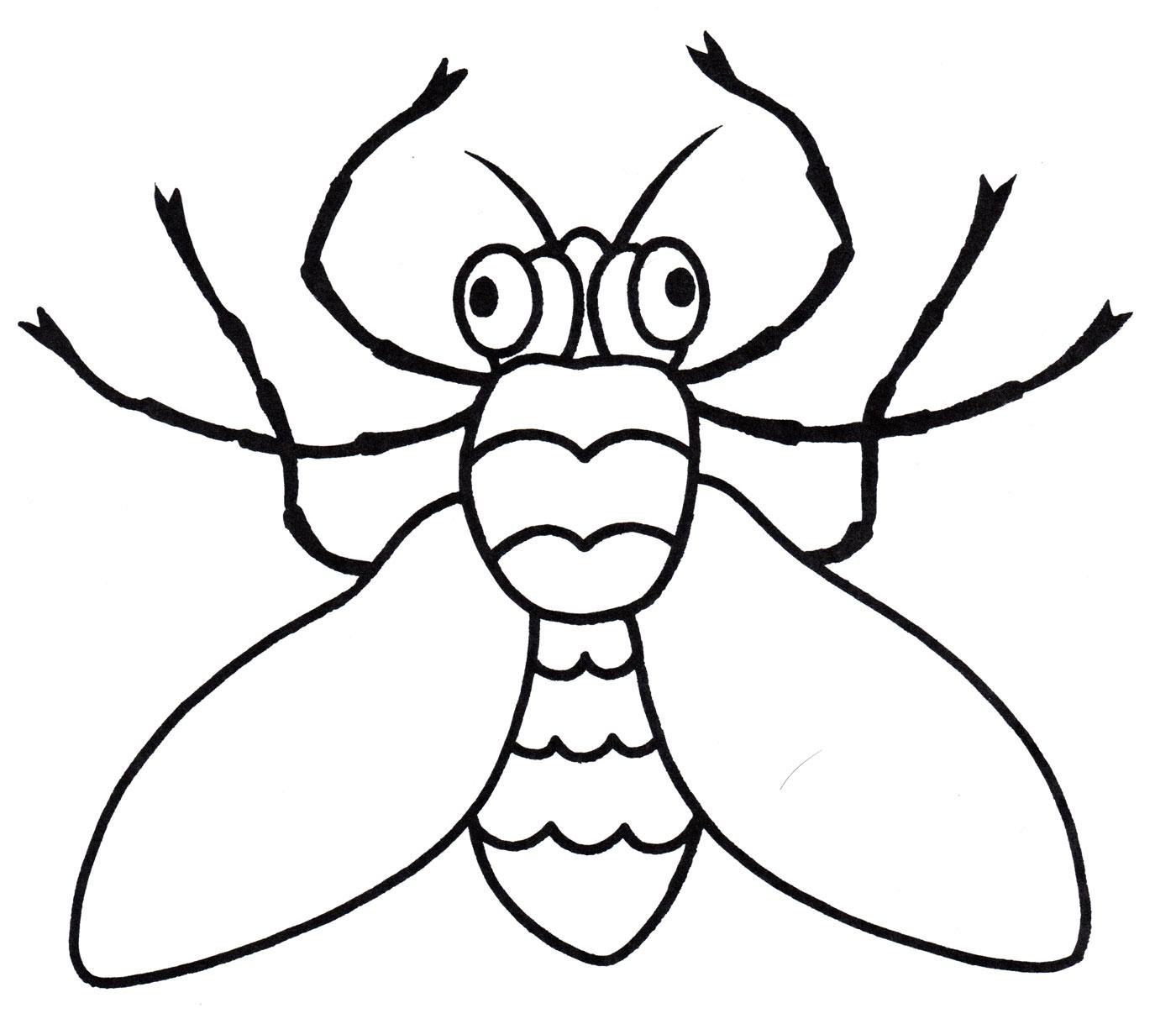 раскраска глазастая муха распечатать бесплатно