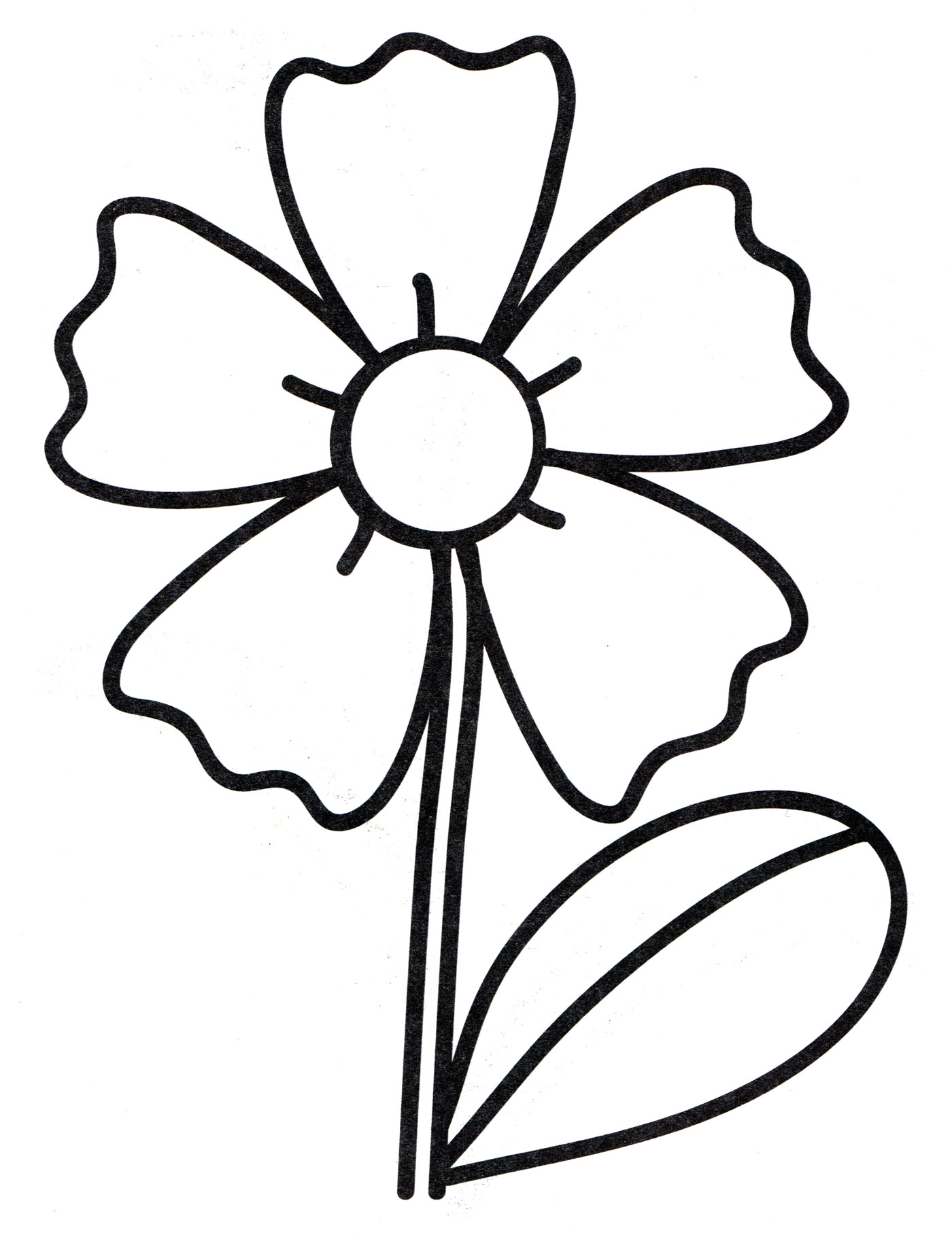 Раскраска Волшебная ромашка - распечатать бесплатно