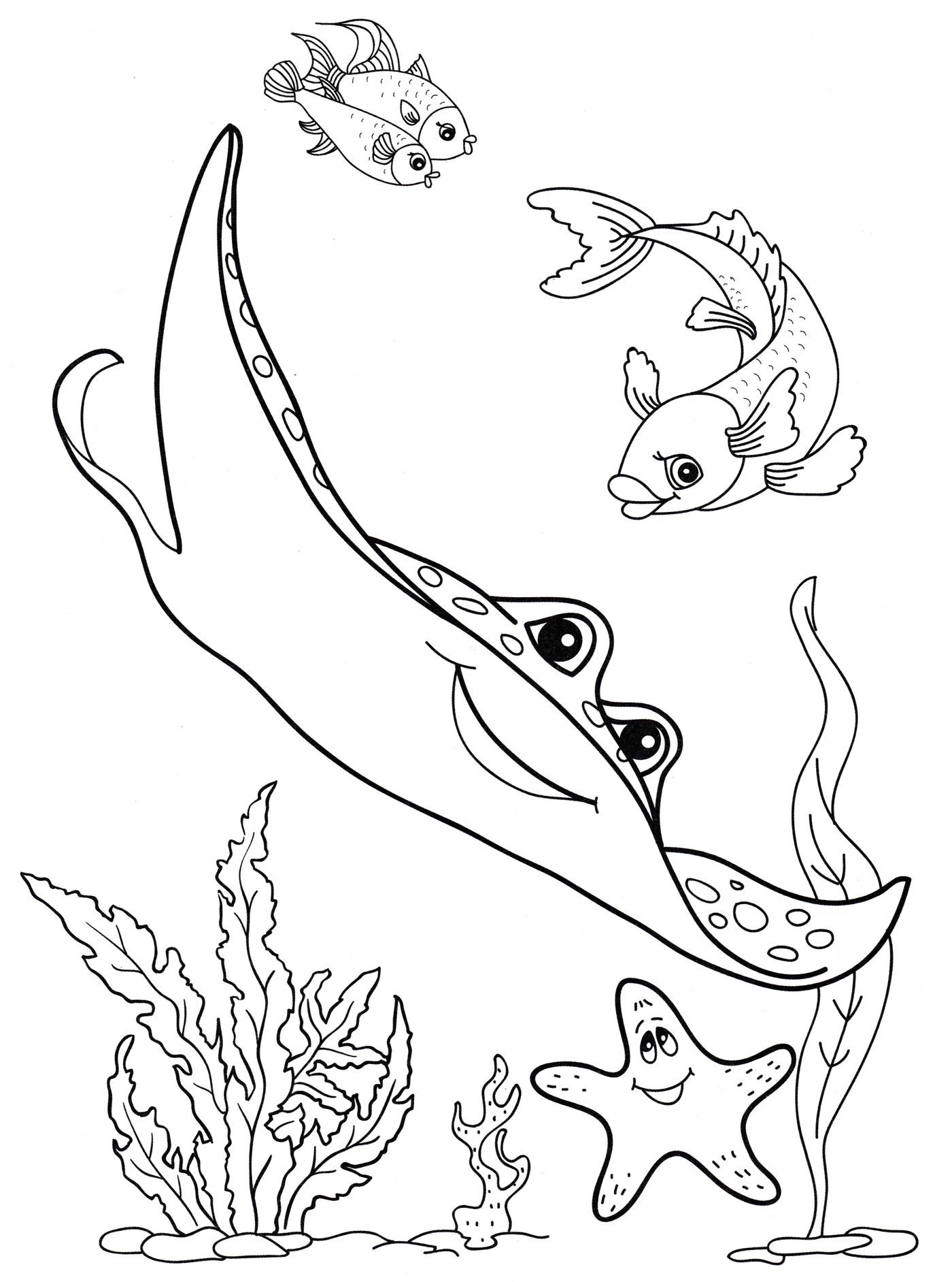 существуют виды картинки раскраски животный мир морей и океанов этом конверте были