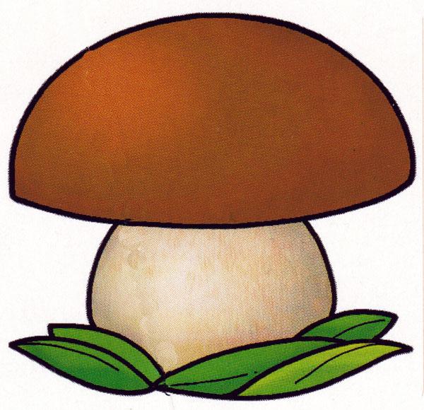 маленький грибочек картинка стали, уроков минутки