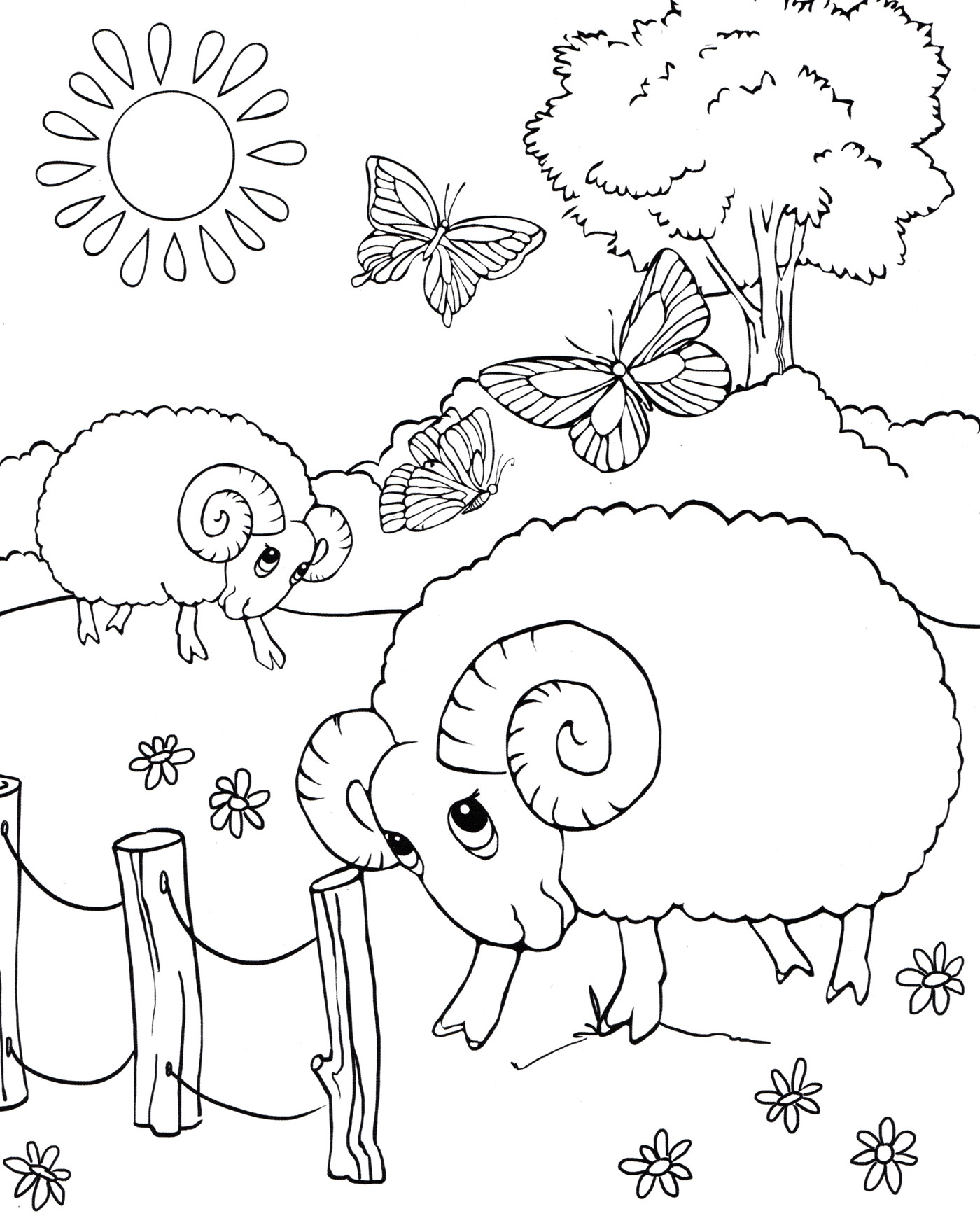 Раскраска Бараны пасутся на лугу - распечатать бесплатно