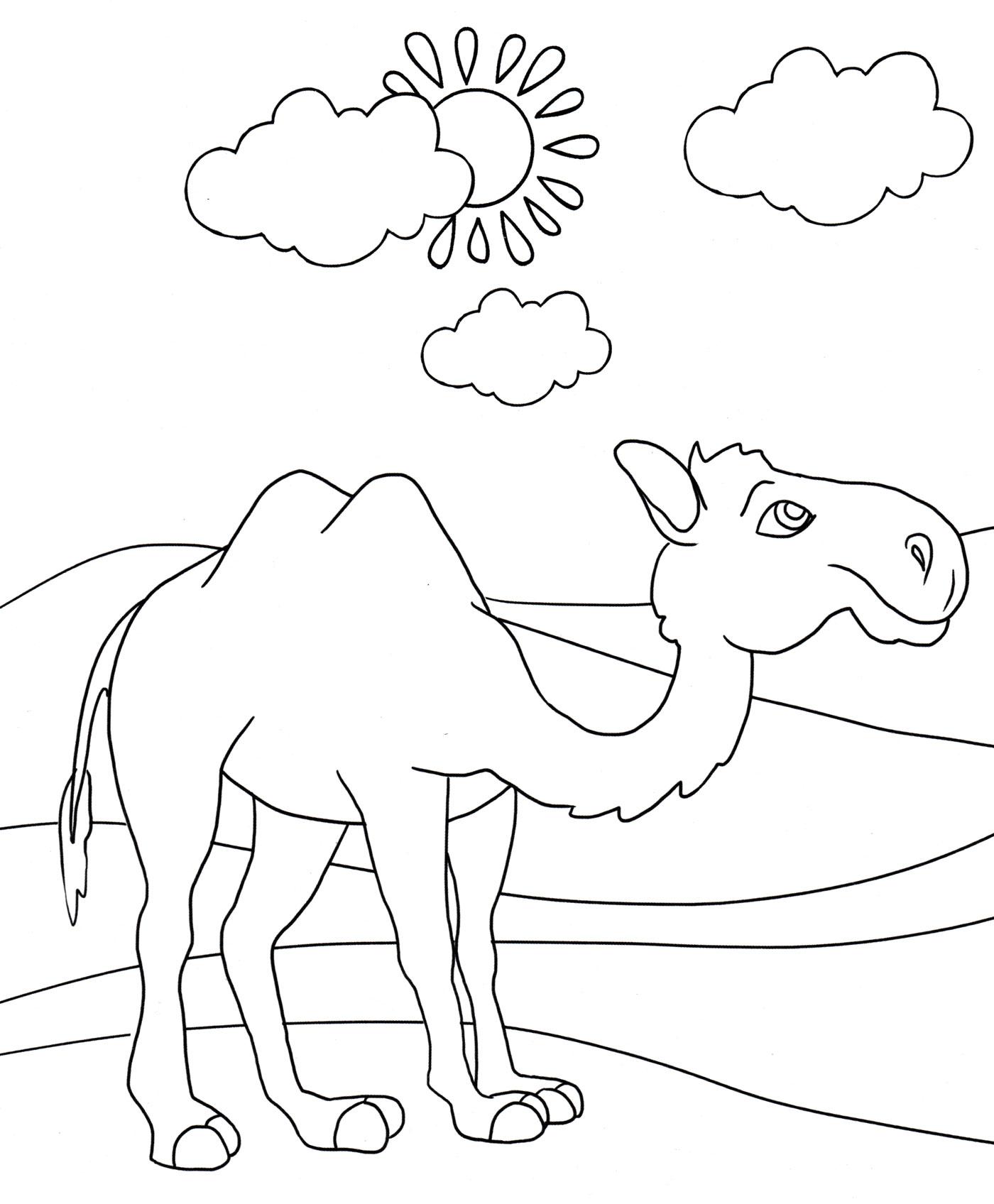 от чего у верблюда горб картинки раскраски мнению владельцев портала