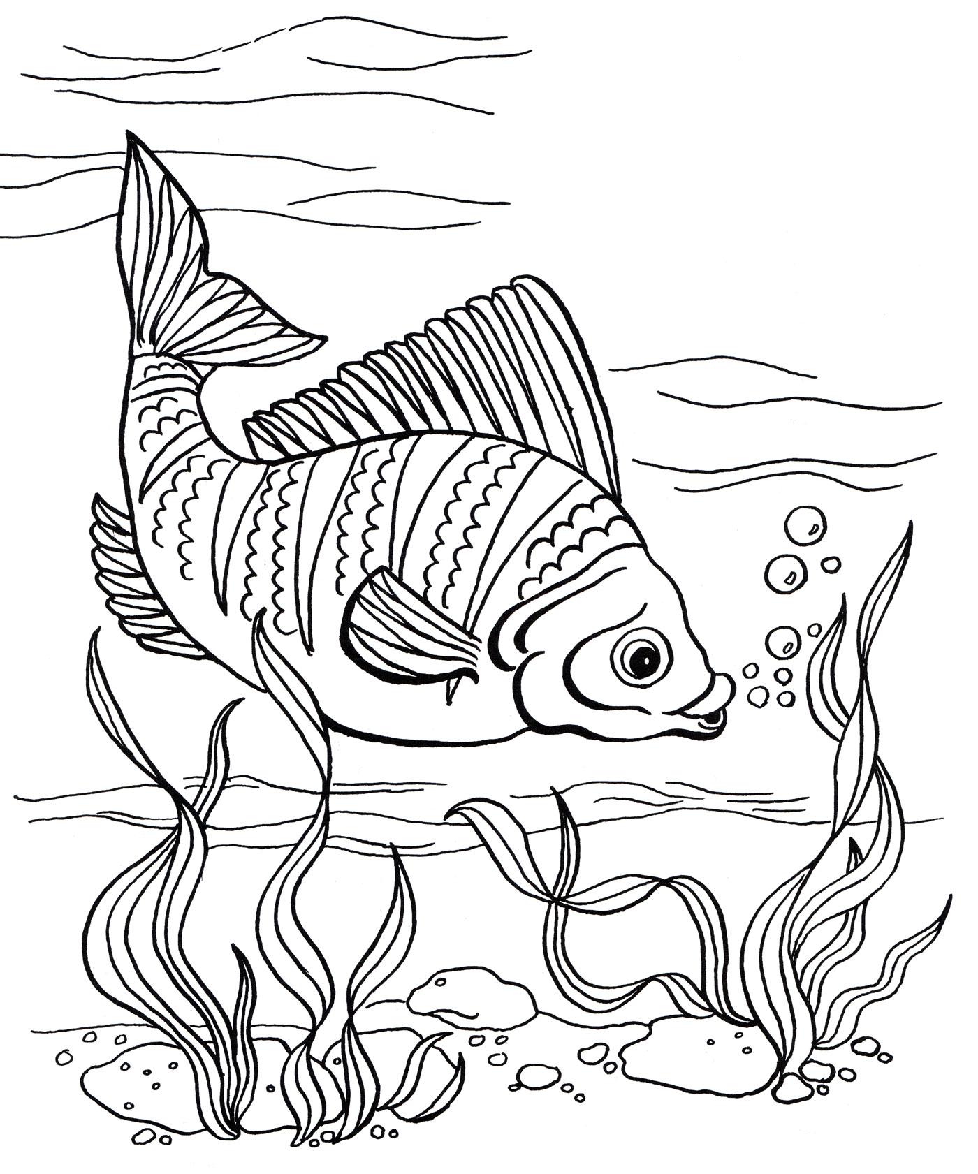 Раскраска Рыба в водорослях - распечатать бесплатно