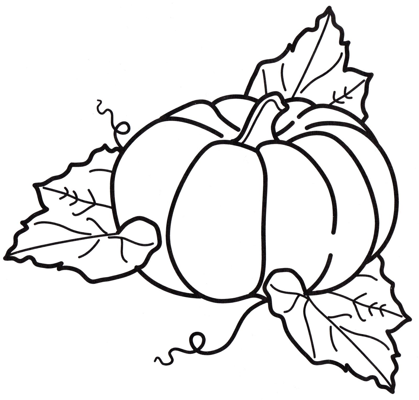 Раскраска Тыква в листьях - распечатать бесплатно