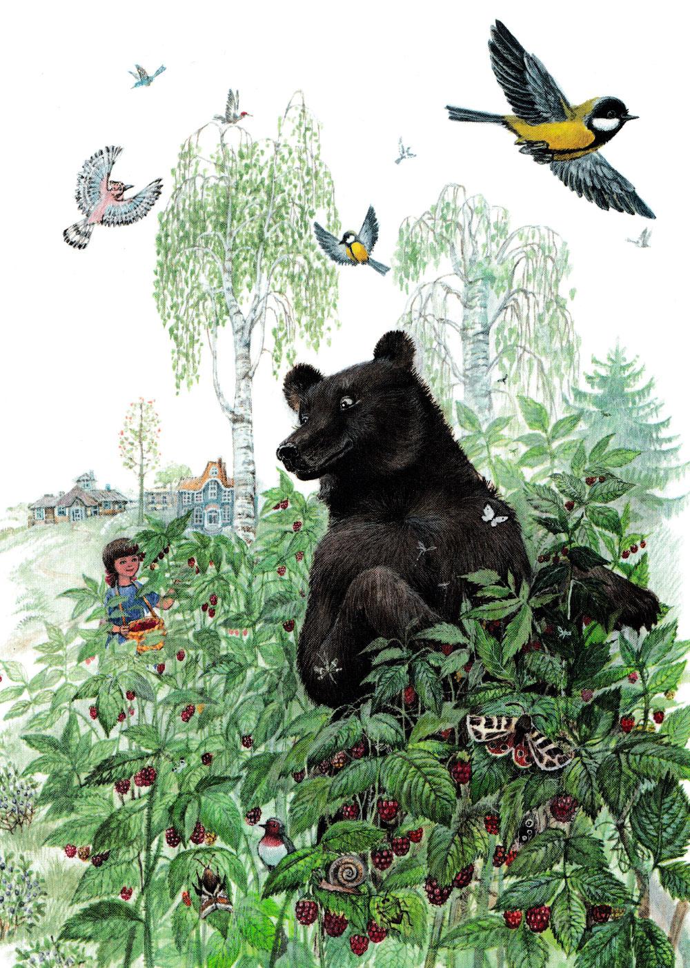 Медведь в малине