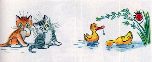 Мойдодыр - умываются котята