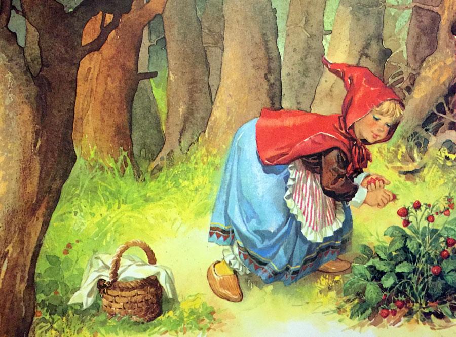 Красная шапочка картинки к сказке