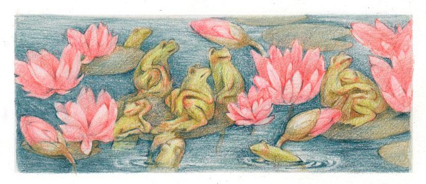 Царевна-лягушка, фото 3
