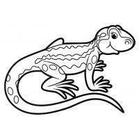 раскраска маленькая ящерица распечатать бесплатно