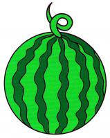 Раскраска Зеленый арбуз - распечатать бесплатно