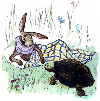 Басня Заяц и черепаха - Сергей Михалков, читать онлайн